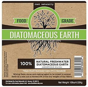 Food rade diatomaceous earth reviews